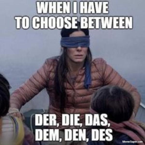 Der, Die, Das, Dem, Den, and Des... What to choose?