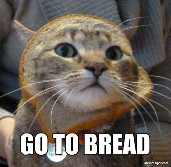 Friday Memes: Cat In Bread