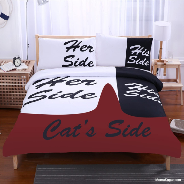 Her, His and Cat side of the bed.