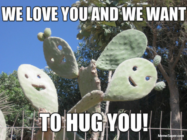 The friendly cactus