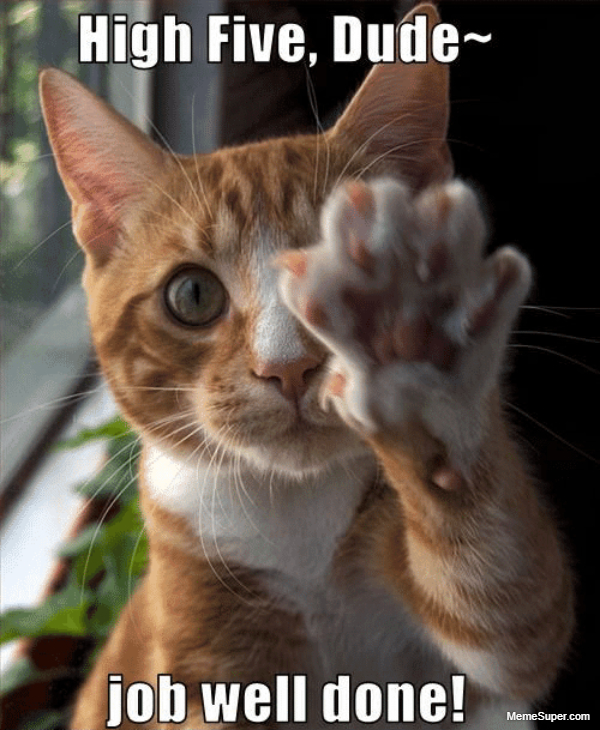 You did a great job. High Five!